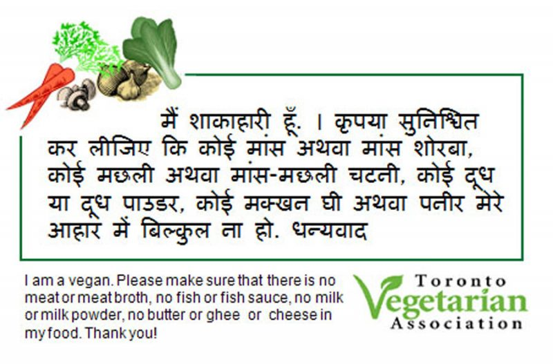 hindi vegan travel card